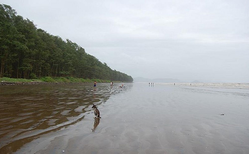 A Great Place to visit Sasawane Beach for Peace