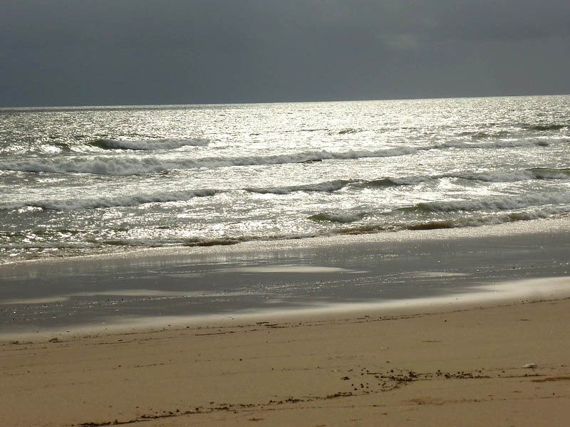 talpona beach best places to visit in goa